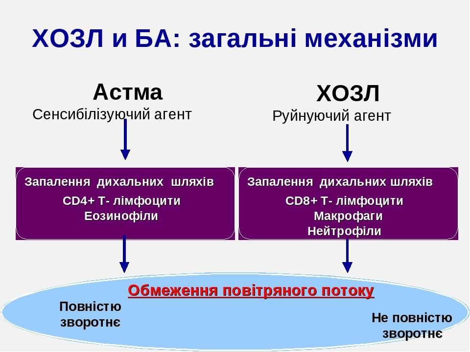 Астма Сенсибілізуючий агент Руйнуючий агент Запалення дихальних шляхів CD4+ T...