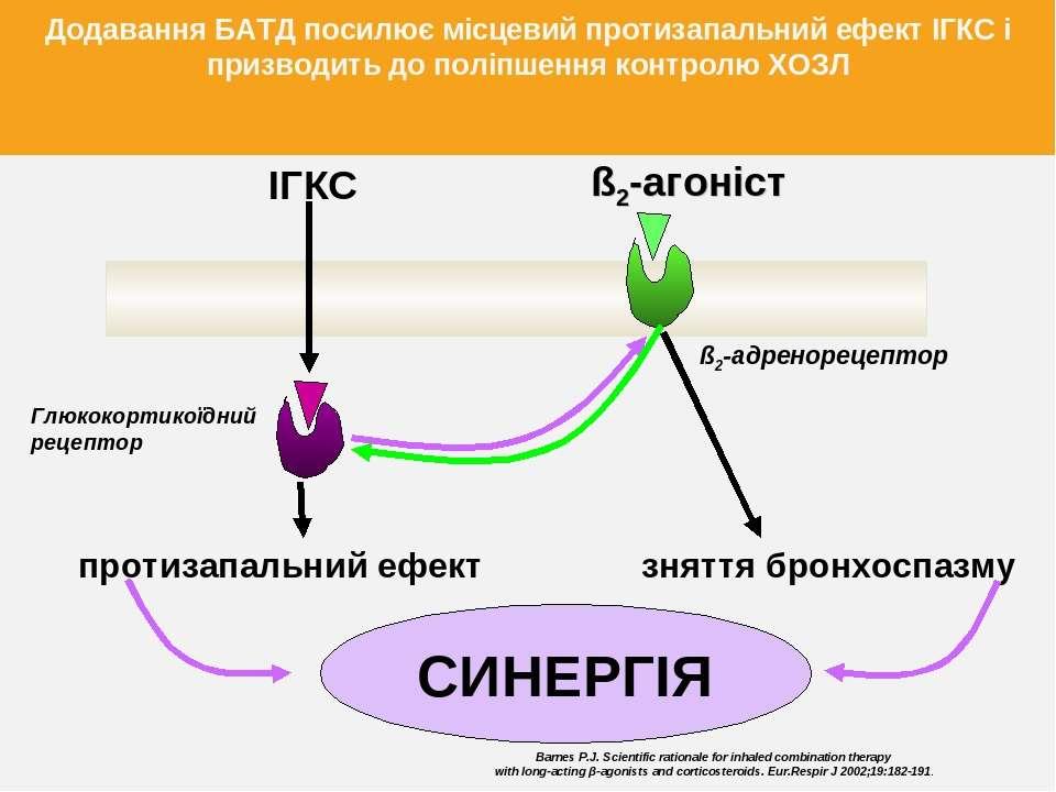 Глюкокортикоїдний рецептор ß2-адренорецептор ІГКС протизапальний ефект ß2-аго...
