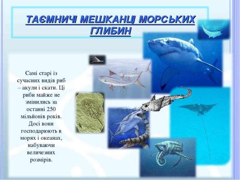 Самі старі із сучасних видів риб – акули і скати. Ці риби майже не змінились ...