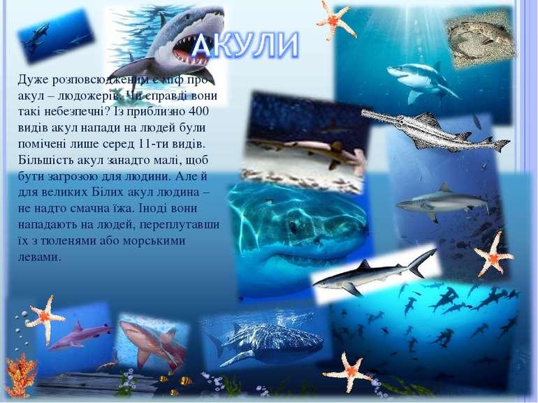 Дуже розповсюдженим є міф про акул – людожерів. Чи справді вони такі небезпеч...