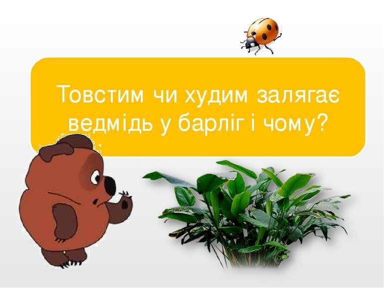 Товстим. Жир обігріває і годує ведмедя. Товстим чи худим залягає ведмідь у ба...
