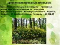 Древлянский природный заповедник Древля нский приро дный запове дник — природ...