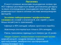 Патогенез В якості основних механізмів пошкодження печінки при HCV інфекції р...