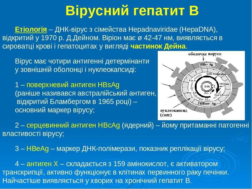 Вірусний гепатит В Етіологія – ДНК-вірус з сімейства Hepadnaviridae (HepaDNA)...