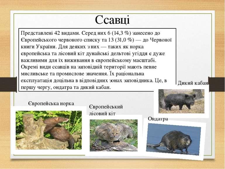 Ссавці Представлені 42 видами. Серед них 6 (14,3 %) занесено до Європейського...