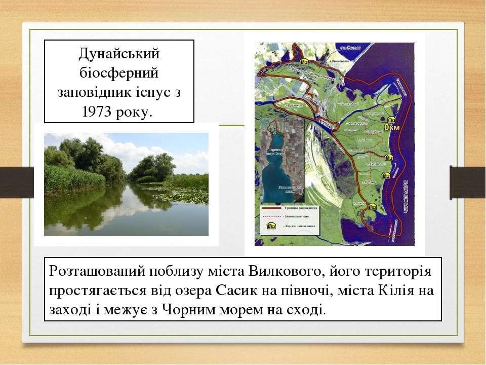 Дунайський біосферний заповідник існує з 1973 року. Розташований поблизу міст...