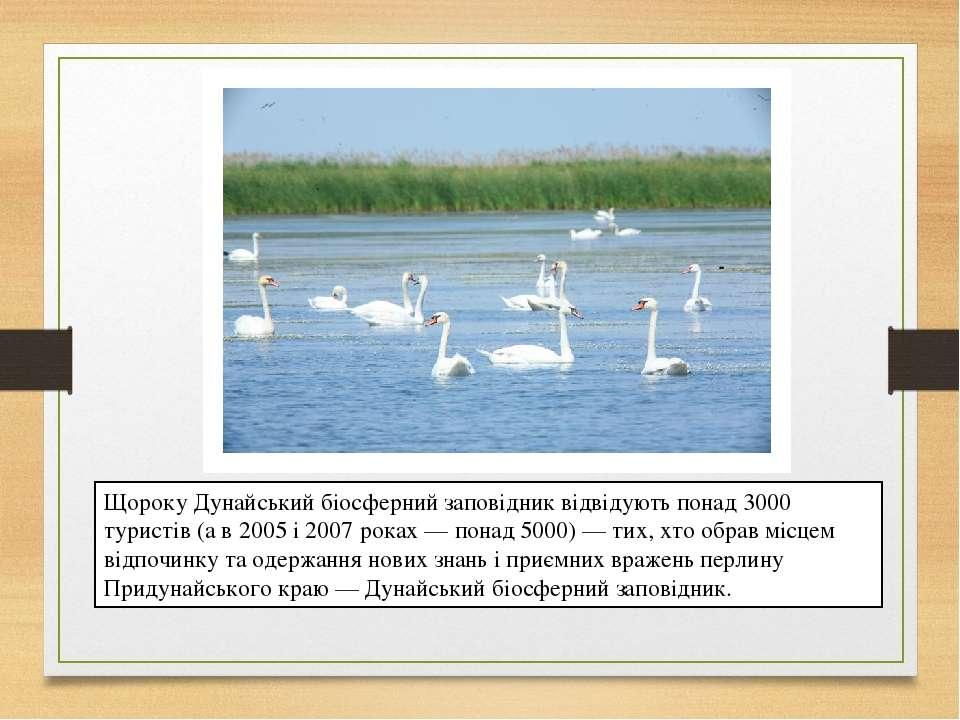 Щороку Дунайський біосферний заповідник відвідують понад 3000 туристів (а в 2...