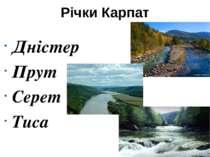 Річки Карпат Дністер Прут Серет Тиса