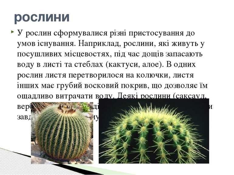 У рослин сформувалися різні пристосування до умов існування. Наприклад, росли...
