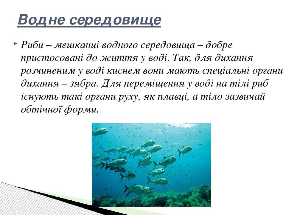 Риби – мешканці водного середовища – добре пристосовані до життя у воді. Так,...
