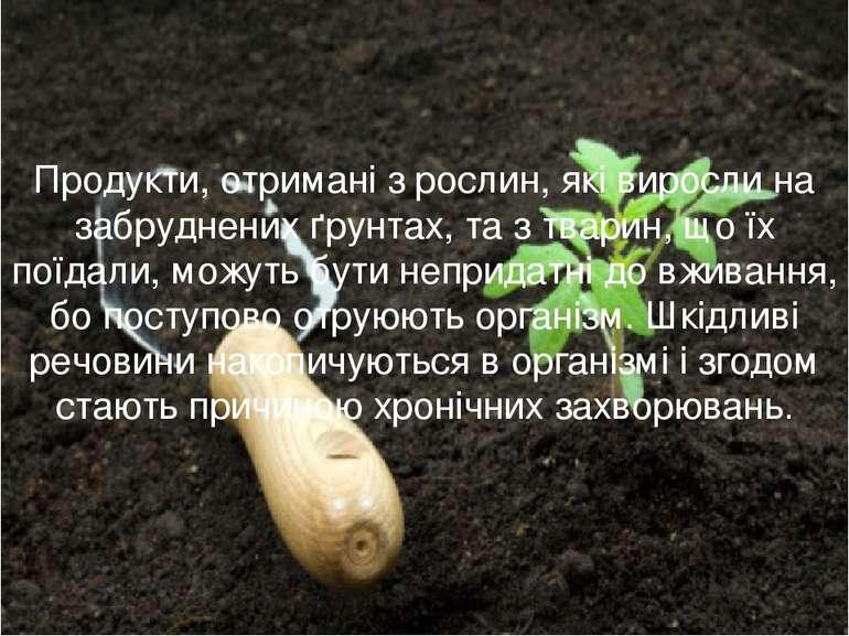 Продукти, отримані з рослин, які виросли на забруднених ґрунтах, та з тварин,...
