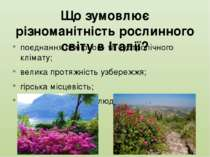 Що зумовлює різноманітність рослинного світу в Італії? поєднання помірного та...