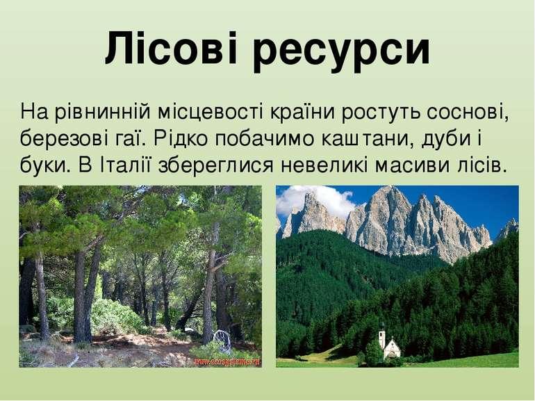 Лісові ресурси На рівнинній місцевості країни ростуть соснові, березові гаї. ...