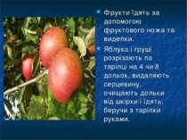 Фрукти їдять за допомогою фруктового ножа та виделки. Яблука і груші розрізаю...