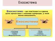 Екосистема