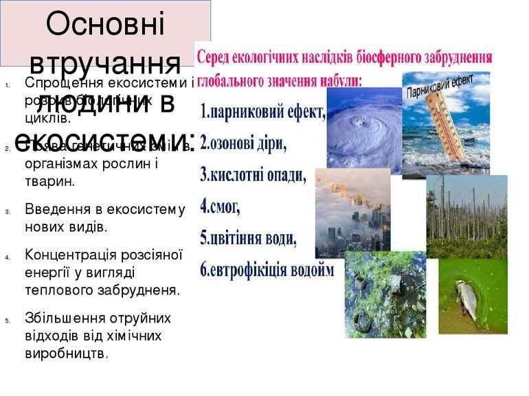 Основні втручання людини в екосистеми: Спрощення екосистеми і розрив біологіч...