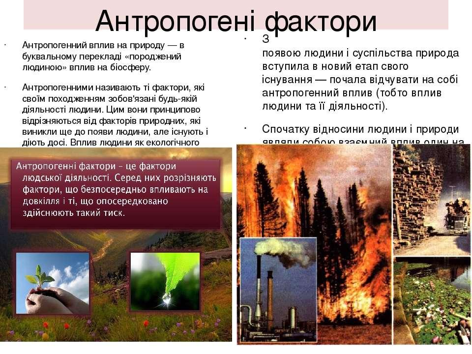 Антропогені фактори Антропогенний вплив на природу— в буквальному перекладі ...