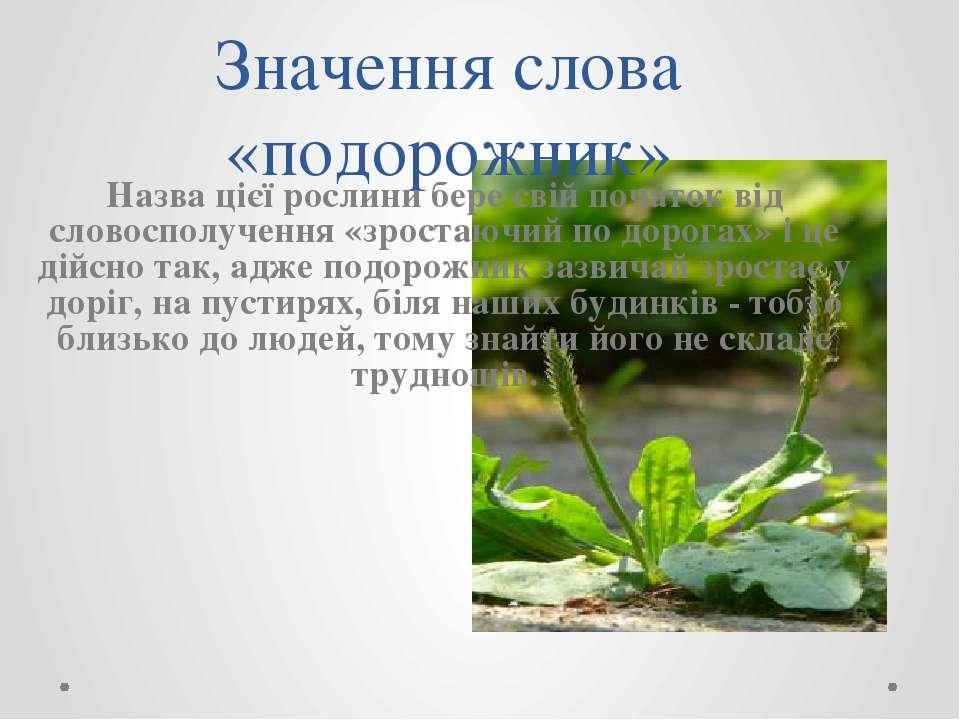 Значення слова «подорожник» Назва цієї рослини бере свій початок від словоспо...