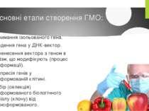 Основні етапи створення ГМО: 1. Отримання ізольованого гена. 2. Введення гена...