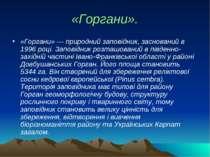 «Горгани». «Горгани» — природний заповідник, заснований в 1996 році. Заповідн...
