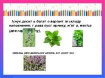 Існує досить багато варіантів складу наповнення: трава пустирнику, м'ята, мел...