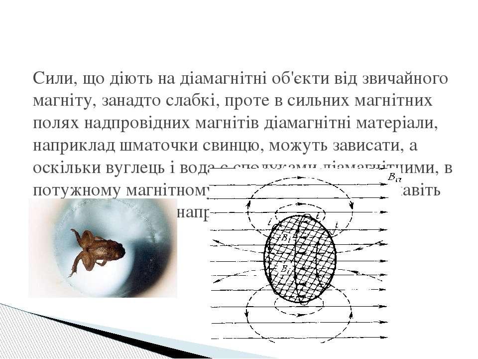 Сили, що діють на діамагнітні об'єкти від звичайного магніту, занадто слабкі,...