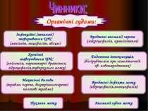 Органічні судоми: Інфекційні (запальні) захворювання ЦНС (менінгіт, енцефаліт...