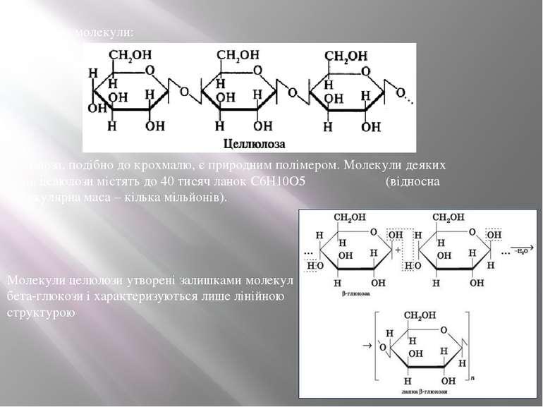 Целюлоза, подібно до крохмалю, є природним полімером. Молекули деяких видів ц...