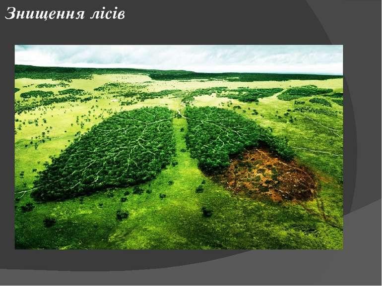 Переосмислення ставлення до природи