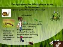 Еко-препарати для відлякування комах На біду комахам Крапля кофеїну вбиває ра...