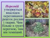 Перегній утворюється внаслідок перегнивання решток рослин і тварин. Чим більш...