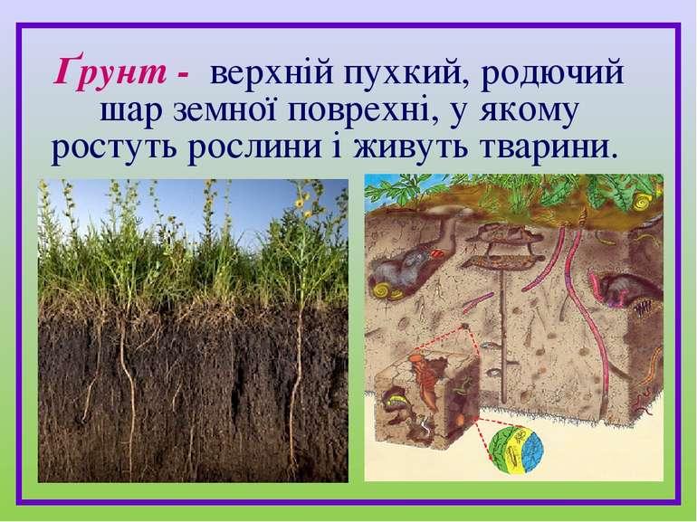 Ґрунт - верхній пухкий, родючий шар земної поврехні, у якому ростуть рослини ...