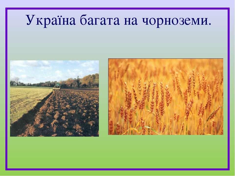 Україна багата на чорноземи.