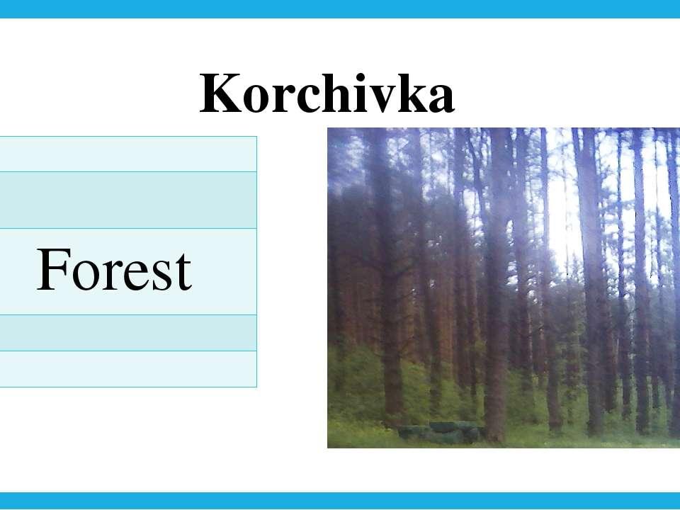 Korchivka Forest