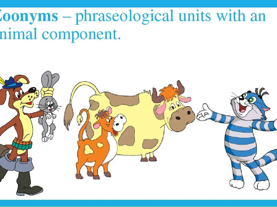 Zoonyms – phraseological units with an animal component.