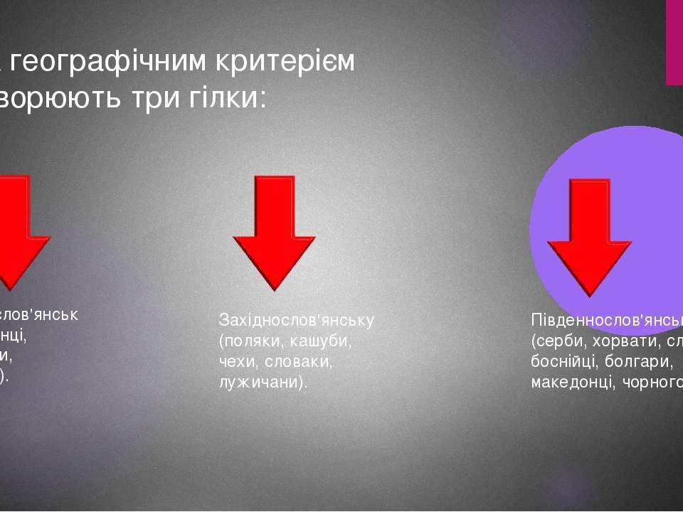 За географічним критерієм утворюють три гілки: Східнослов'янську (українці, б...