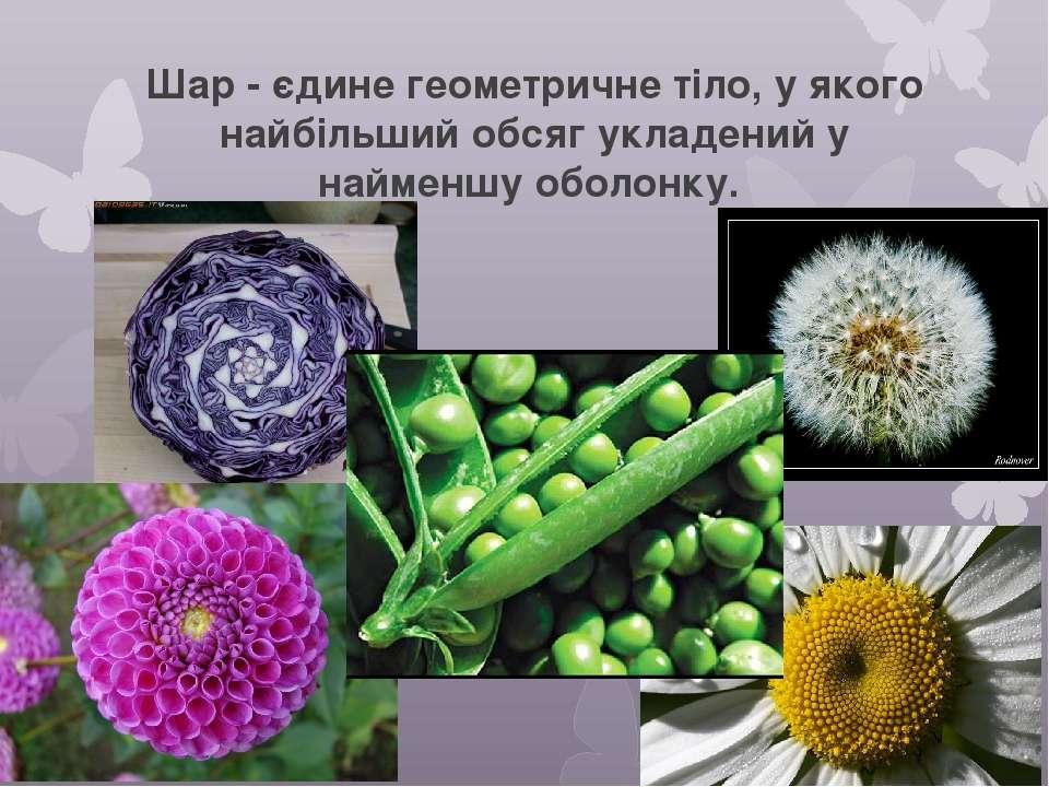 Геометрія і природа. Різні віруси, мають правильну геометричну форму.