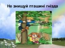 Не знищуй пташині гнізда