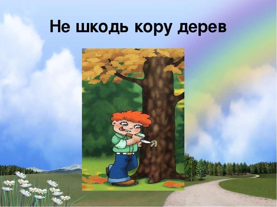 Не шкодь кору дерев