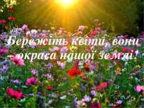 Бережіть квіти, вони – окраса нашої землі!