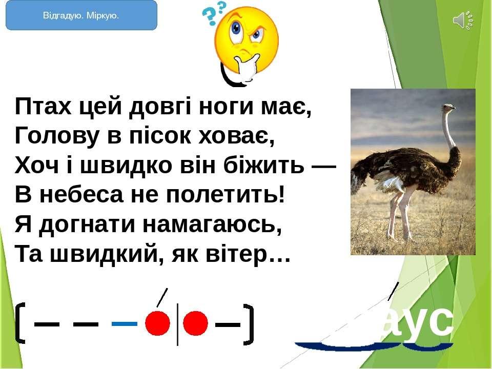 Птах цей довгі ноги має, Голову в пісок ховає, Хоч і швидко він біжить — В...