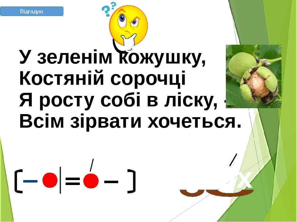 У зеленім кожушку, Костяній сорочці Я росту собі в ліску, - Всім зірвати х...