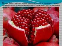 Основу Вашого раціону повинні складати продукти переважно з нижньої частини п...
