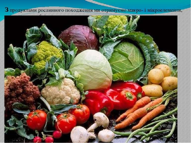 З продуктами рослинного походження ми отримуємо макро- і мікроелементи, які т...