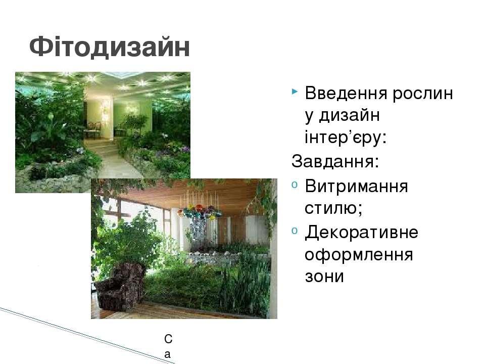 Введення рослин у дизайн інтер'єру: Завдання: Витримання стилю; Декоративне о...