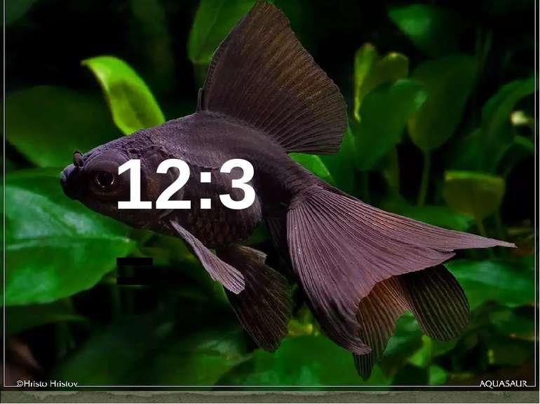 12:3=