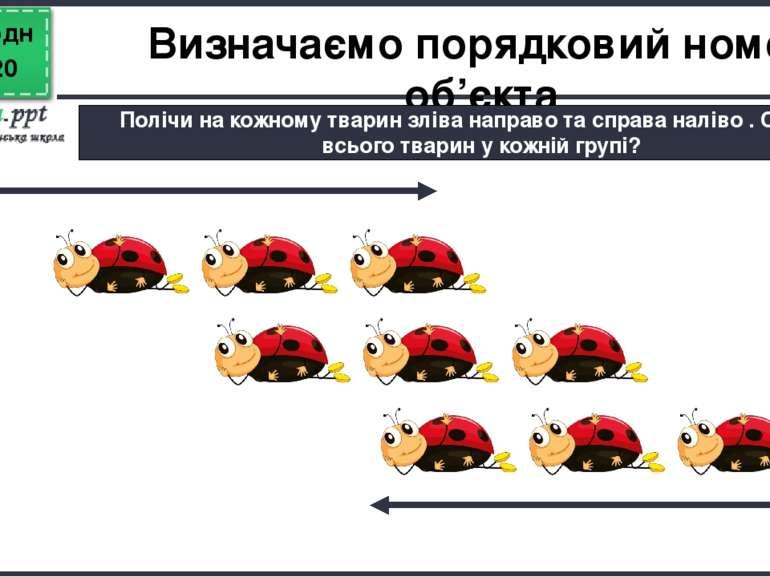 Сьогодні Визначаємо порядковий номер об'єкта Полічи на кожному тварин зліва н...
