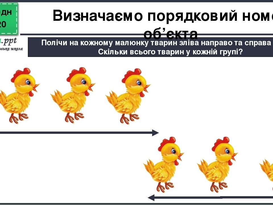 Сьогодні Полічи на кожному малюнку тварин зліва направо та справа наліво. Скі...