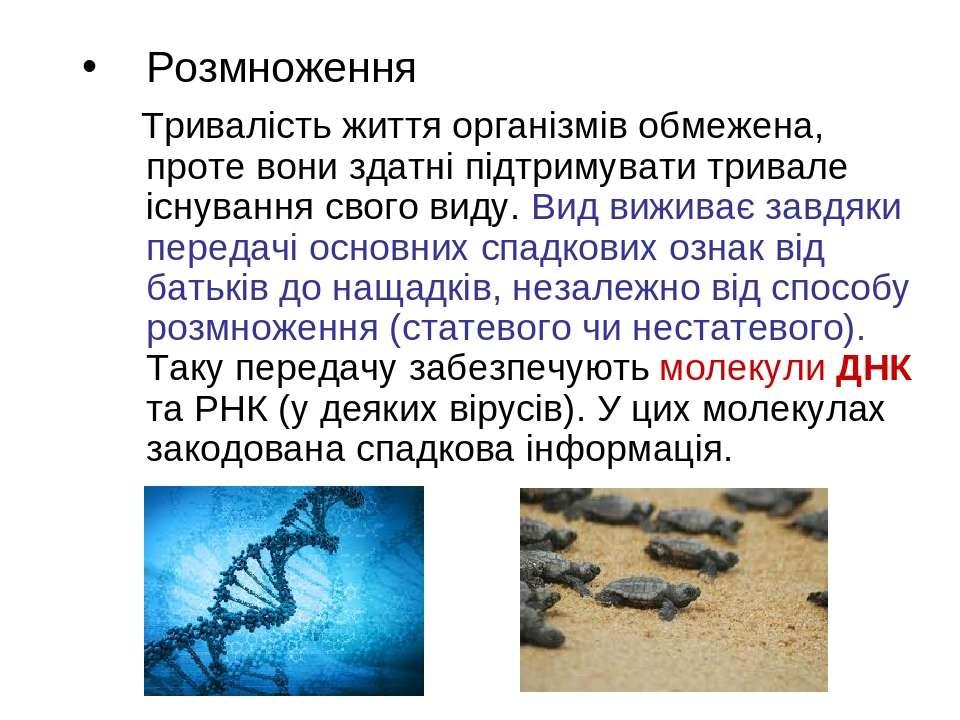 Розмноження Тривалість життя організмів обмежена, проте вони здатні підтримув...