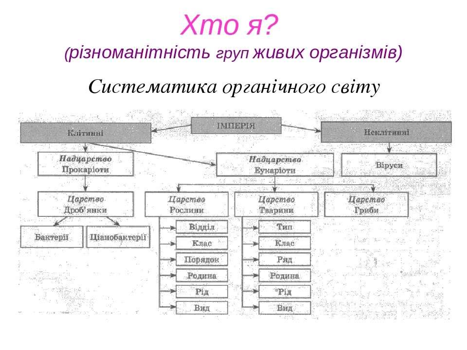 Систематика органічного світу Хто я? (різноманітність груп живих організмів)